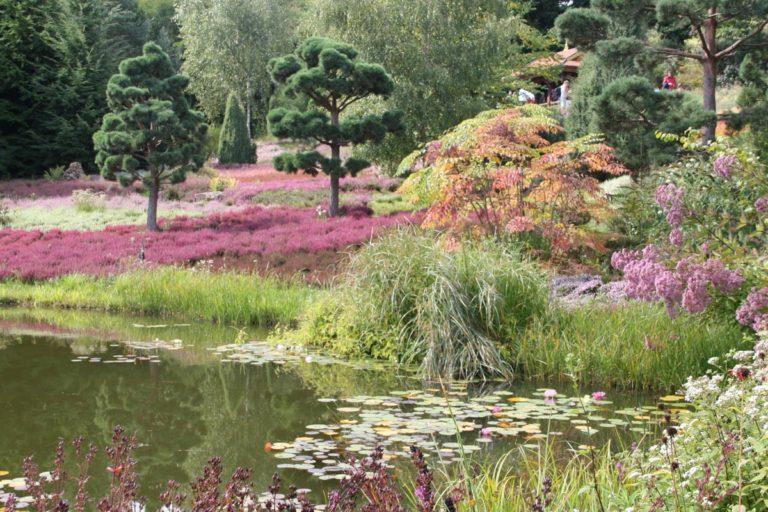 Landschaft mit Teich, Weiden, Blumen